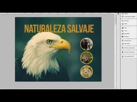 Crear Pdf Interactivo En Indesign Photoshop Tutorial Design Tutorials Star Photography