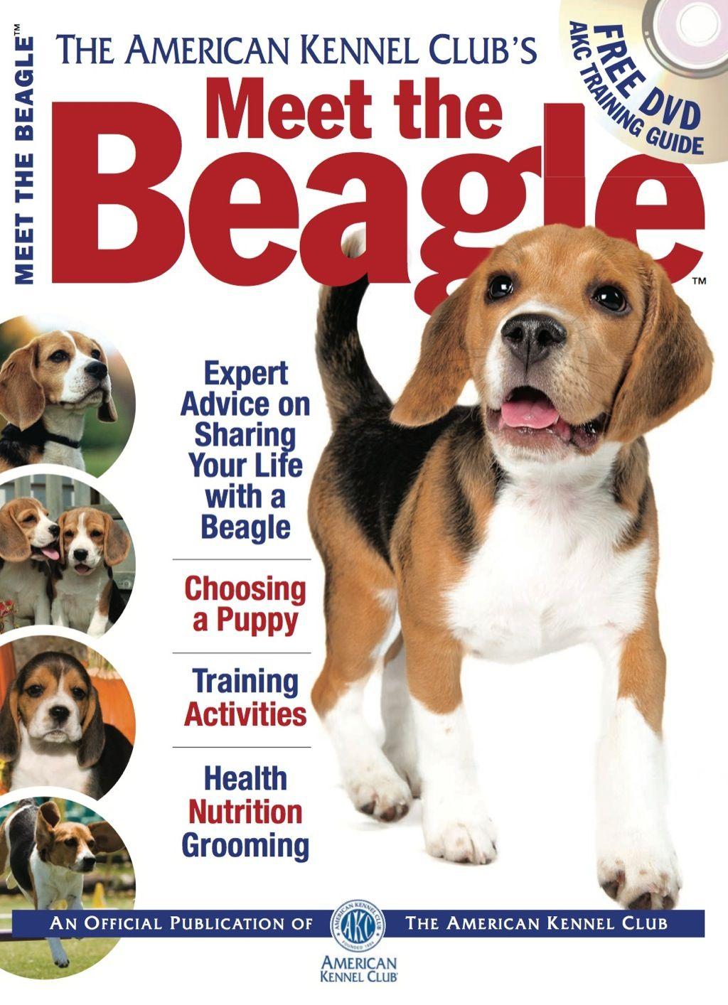 Meet The Beagle Ebook Beagle Train Activities Beagle Art