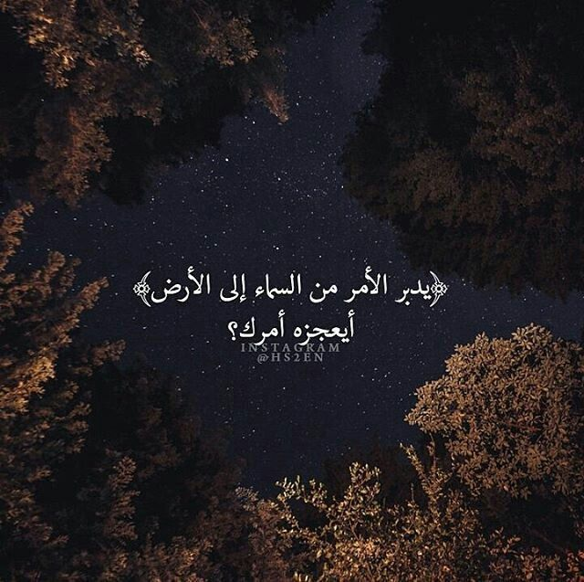 Pin By Mk On اسلام Wise Words Quotes Quran Quotes Positive Quotes