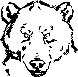 Bear coloring page  Bears first  Pinterest  Coloring pages