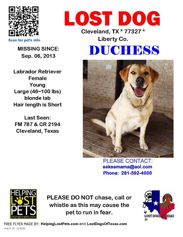 Pin By Leeann Hickman On Greater Houston Lost Dogs Losing A Dog Labrador Retriever Find Pets
