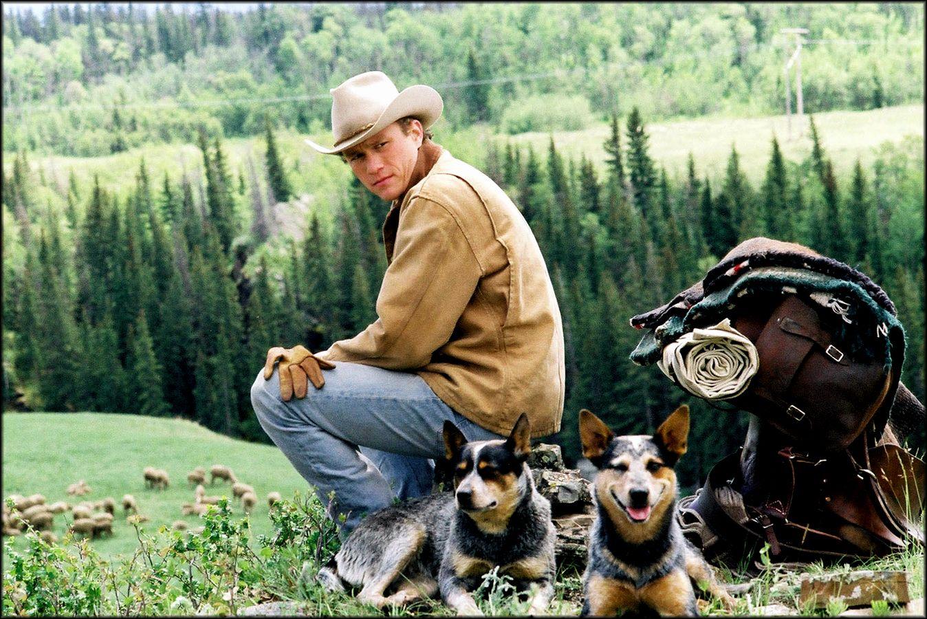 Brokeback Mountain Wallpaper Brokeback Mountain Jake