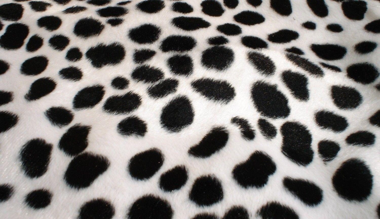 Dalmatian Spot Fabric Related Keywords Amp Suggestions Dalmatian Print Blanket Dalmatian Pattern Spotted Wallpaper