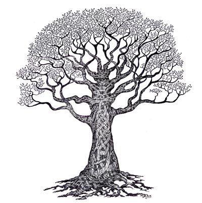 arbre celtique symboles arbre de vie pinterest. Black Bedroom Furniture Sets. Home Design Ideas