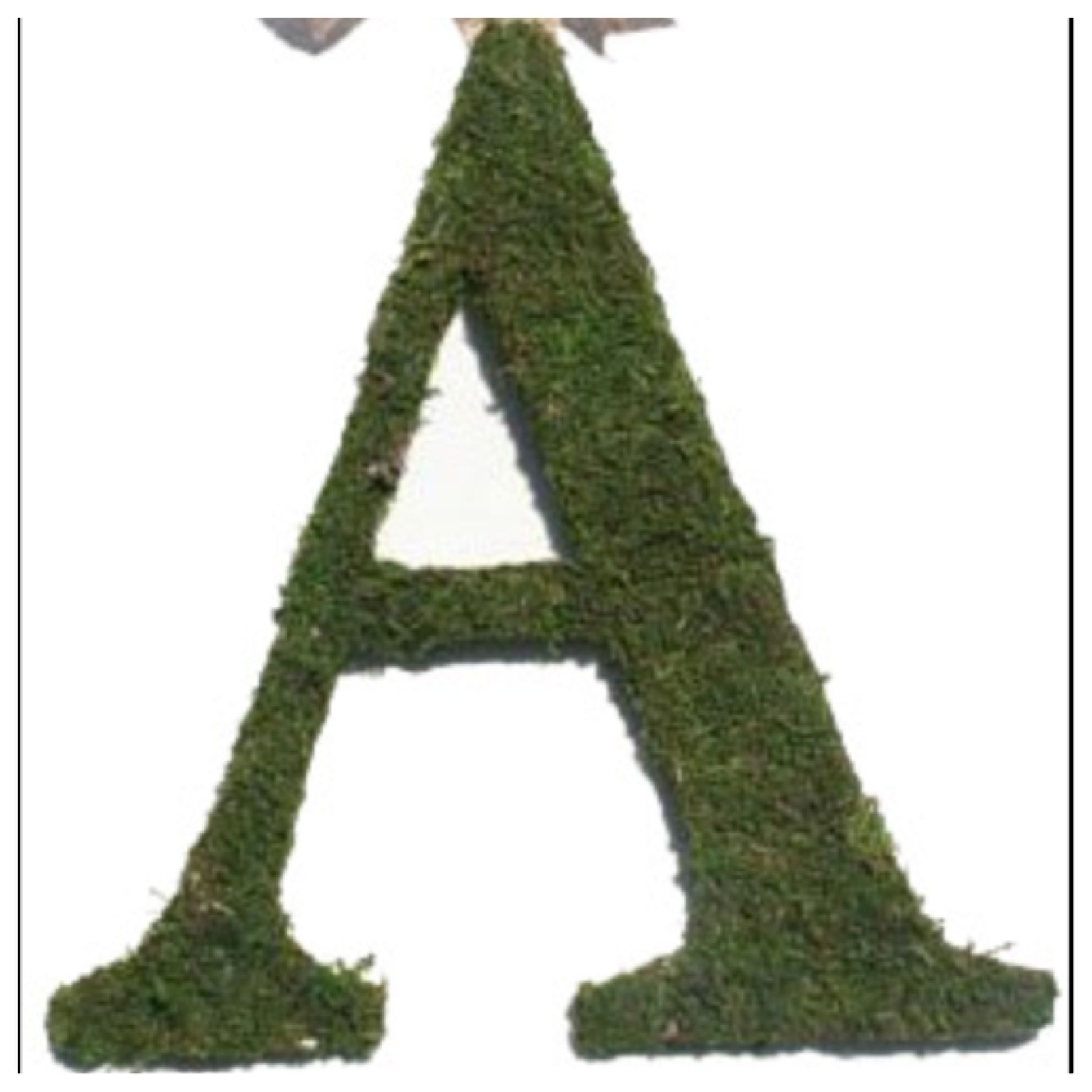 Moss letters for your door or wall!