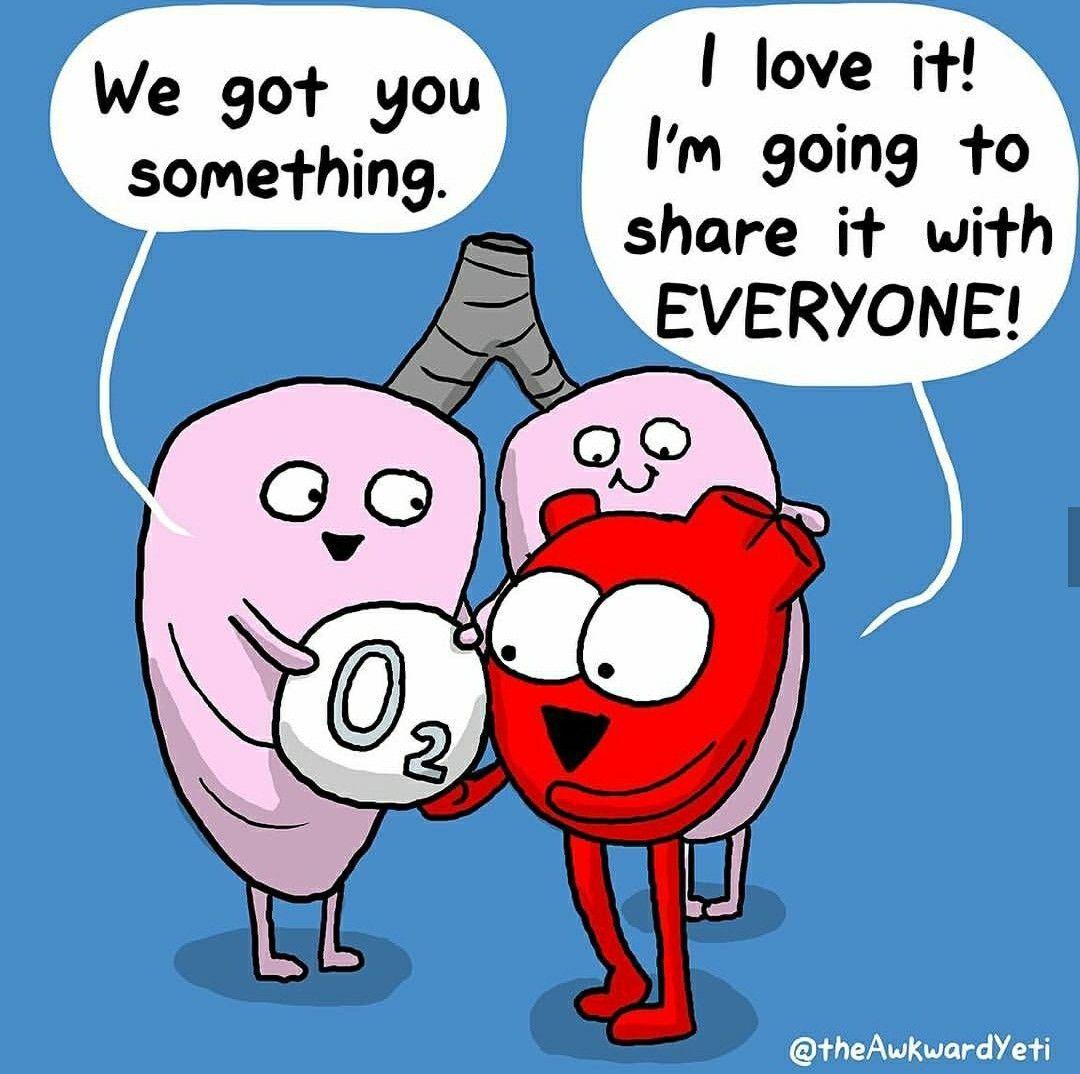 The Awkward Yeti comics Biology humor, Science jokes