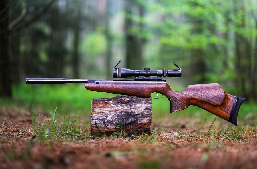 HW30S : Lukas Parsley Custom Stocks   Air Rifle   Air rifle
