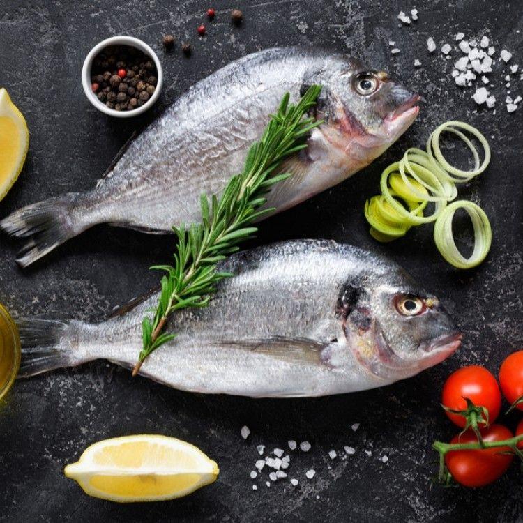 أفضل أنواع السمك مطبخ سيدتي Fish Food Turkey