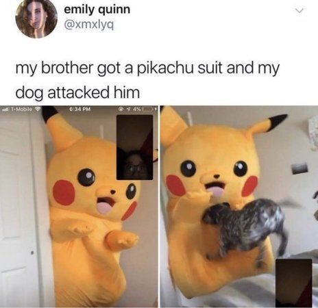 Memes That Make You Lol Irl 7 New Thread Created Link In Op Really Funny Memes Funny Relatable Memes Stupid Funny Memes