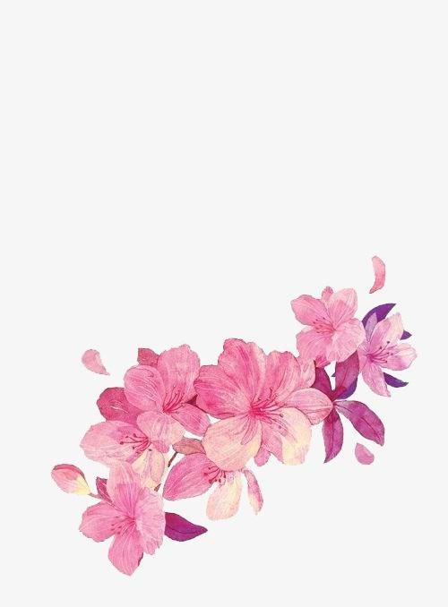 Painted Flowers Petal Pink Flower Png Image Pink Flower Painting Flower Painting Flower Drawing