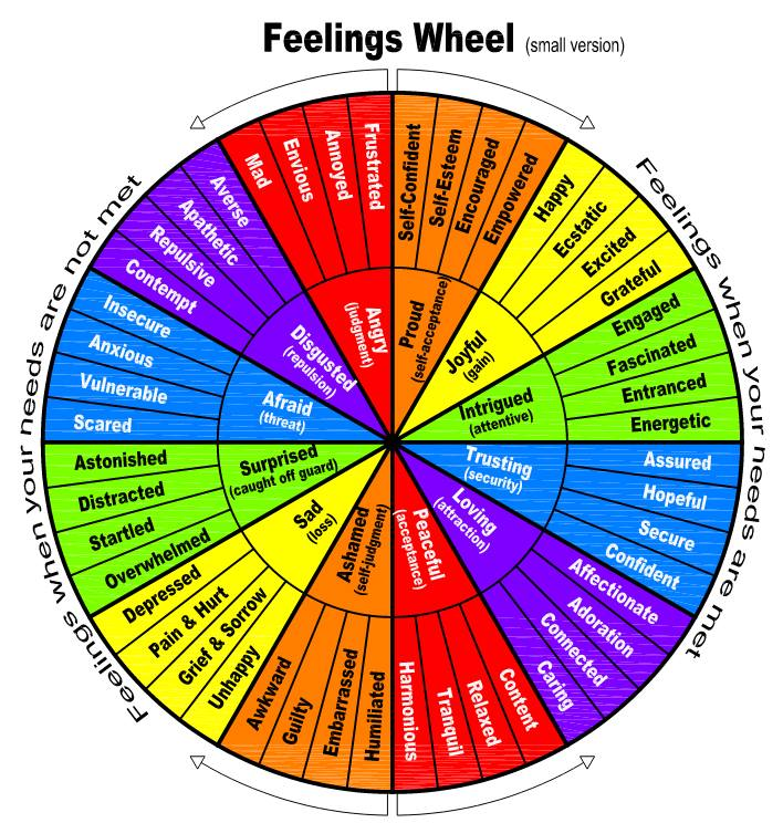 A Feelings Wheel Chart For Intjs Feelings Wheel Emotion Chart Emotions Wheel