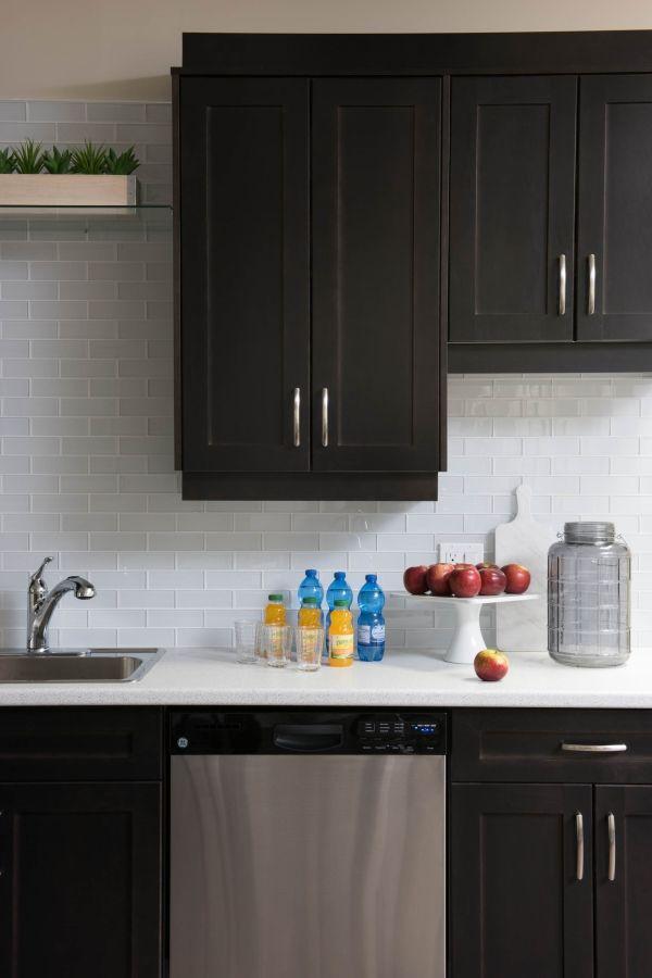 Modern Kitchen With Black Cabinets Glass Back Splash And