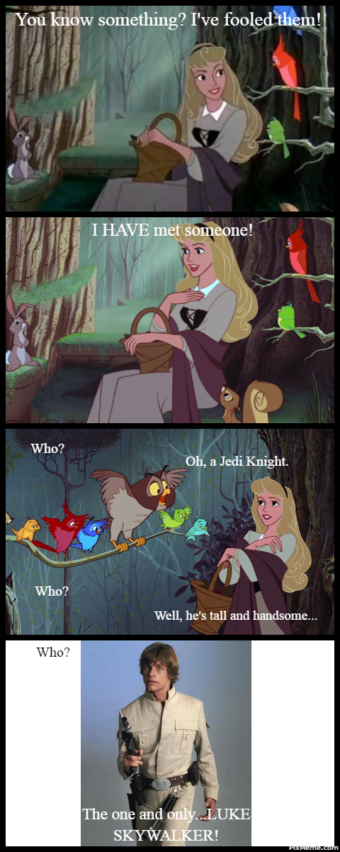 Star Wars Memes By Missagent E On Pinterest Memes Starwarsmemes Disney Disneymemes Sleepingbeauty Auror Star Wars Humor Star Wars Memes Disney Star Wars