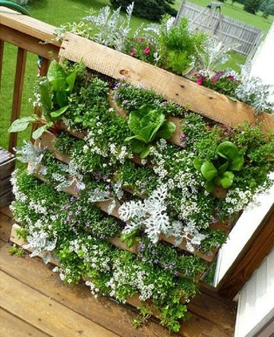 10 DIY Garden Ideas for Using Old Pallets - Greenhouses NZ