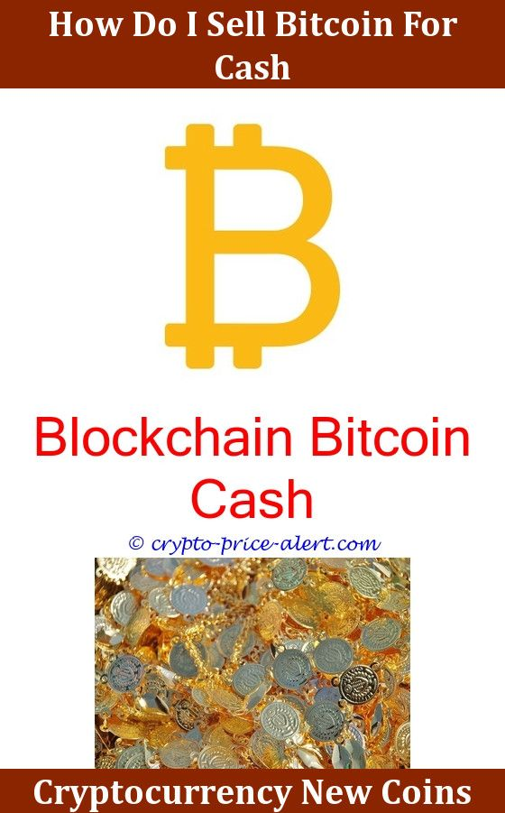 bitcoin price cryptocurrency reddit