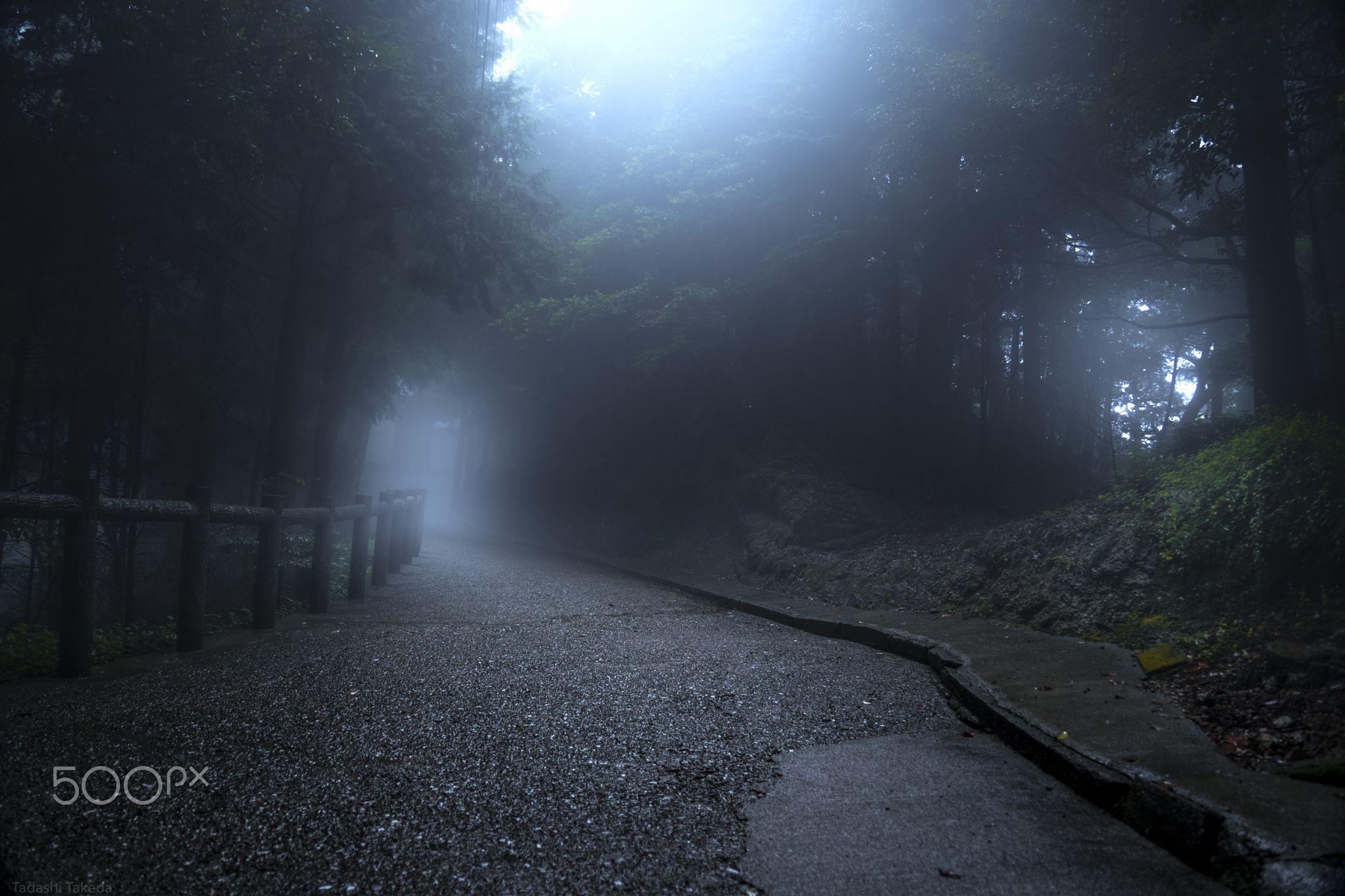 To the Temple of the mist - To the Temple of the mist