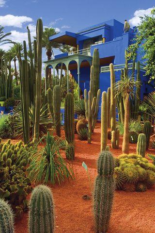 Jardin Majorelle Marrakech Marrakech Morocco Marrakech Visit