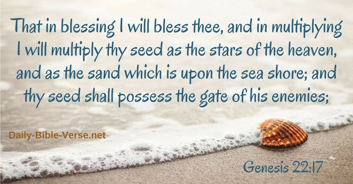 Pin on bible quotes and images about the bible