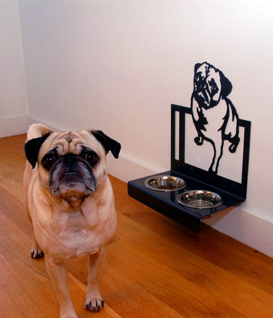These Creatures Seattle Brooklyn Pug Designer Hanging Feeder Pugs Dog Bowls Dogs