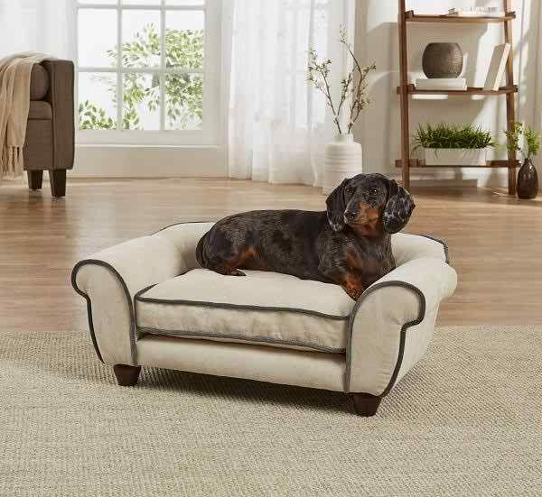 Cleo Velvet Sofa Pet Sofa Dog Sofa Dog Sofa Bed