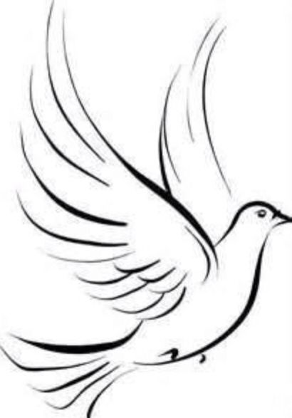 Tattoo Line Drawing Software : Simple dove sketch drawings pinterest sketches