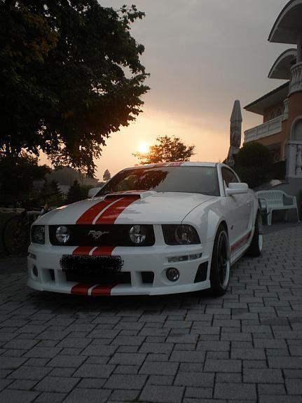 Ford Mustang Gt Sportscar Vehicles I Love Pinterest Willhaben
