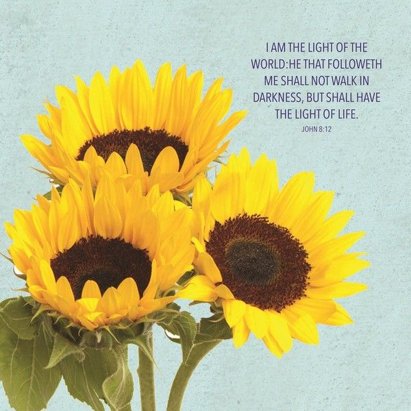 American Made Sunflower Plaque (25 BRL) ❤ Liked On Polyvore Featuring Home,  Home