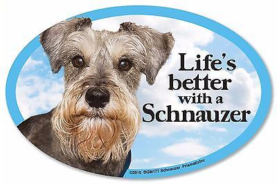 """Life/'s Better with a Poodle white 6/"""" x 4/"""" Oval Dog Magnet for Cars and more"""