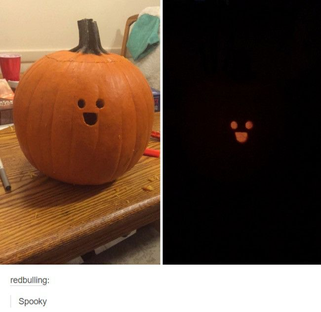 Best Of Tumblr Pumpkin Carving Pumpkin Funny Pictures