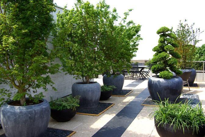 pingl par lebrun marc sur jardin et terrasse pinterest jardins paysagiste et jardin paysager. Black Bedroom Furniture Sets. Home Design Ideas