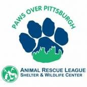 Welcome To Paws Over Pittsburgh The Animal Rescue League S Team