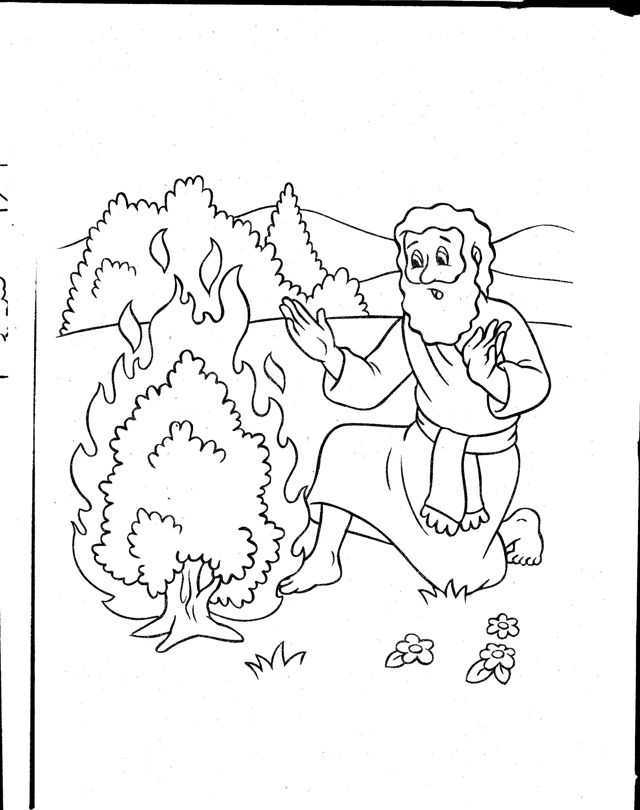 Pin on Bible Journaling Faith Illustration