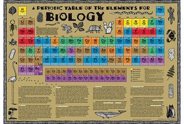Pin by robbi reister on medical learning tipstricks pinterest periodic table urtaz Image collections