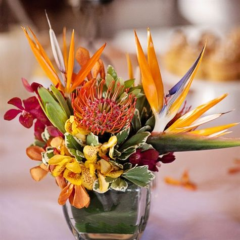 Bird Of Paradise Centerpieces Tropical Flower Arrangements Tropical Floral Arrangements Tropical Centerpieces