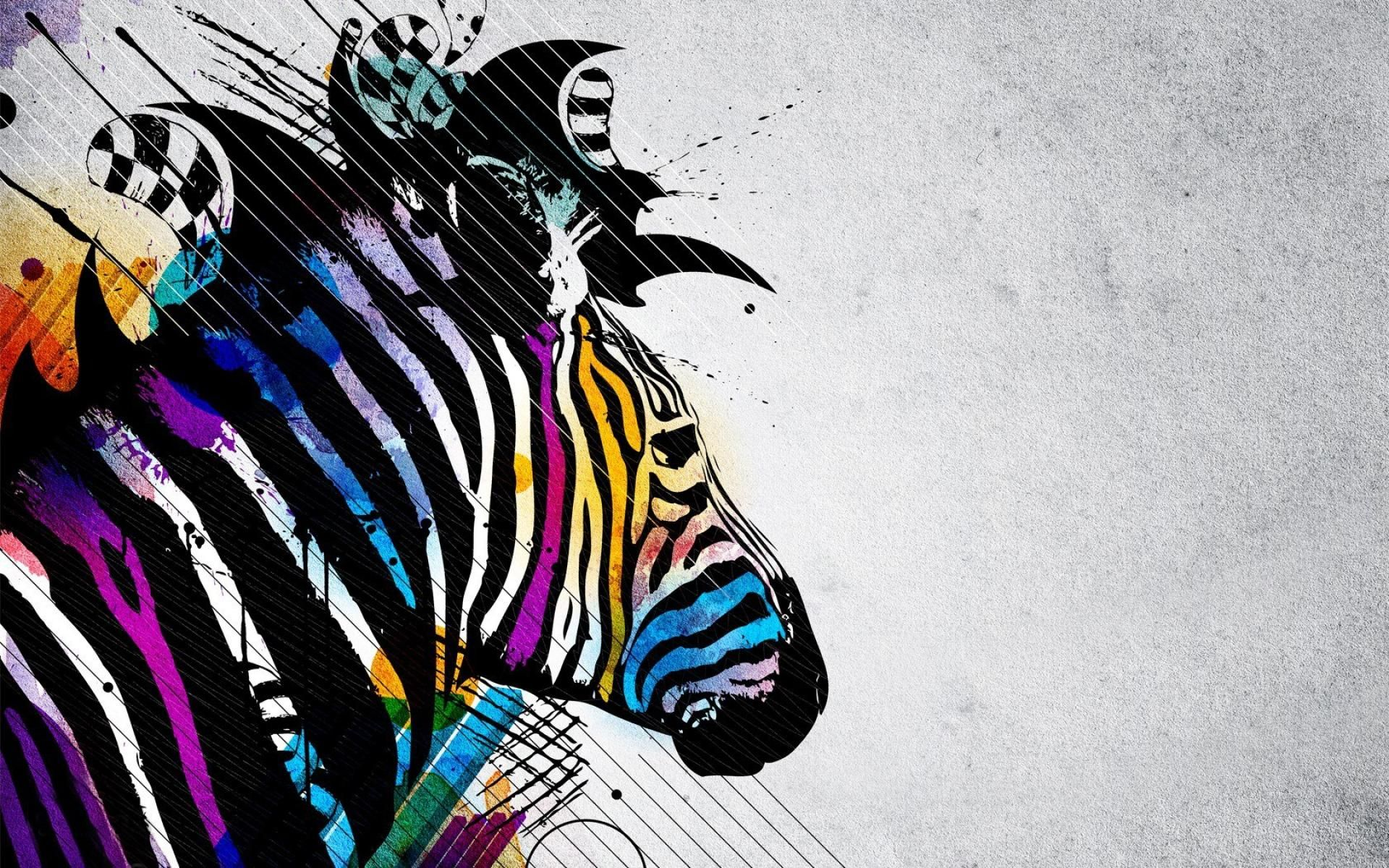 zebra computer wallpapers desktop backgrounds id 1680a—1050 zebra desktop wallpapers 41