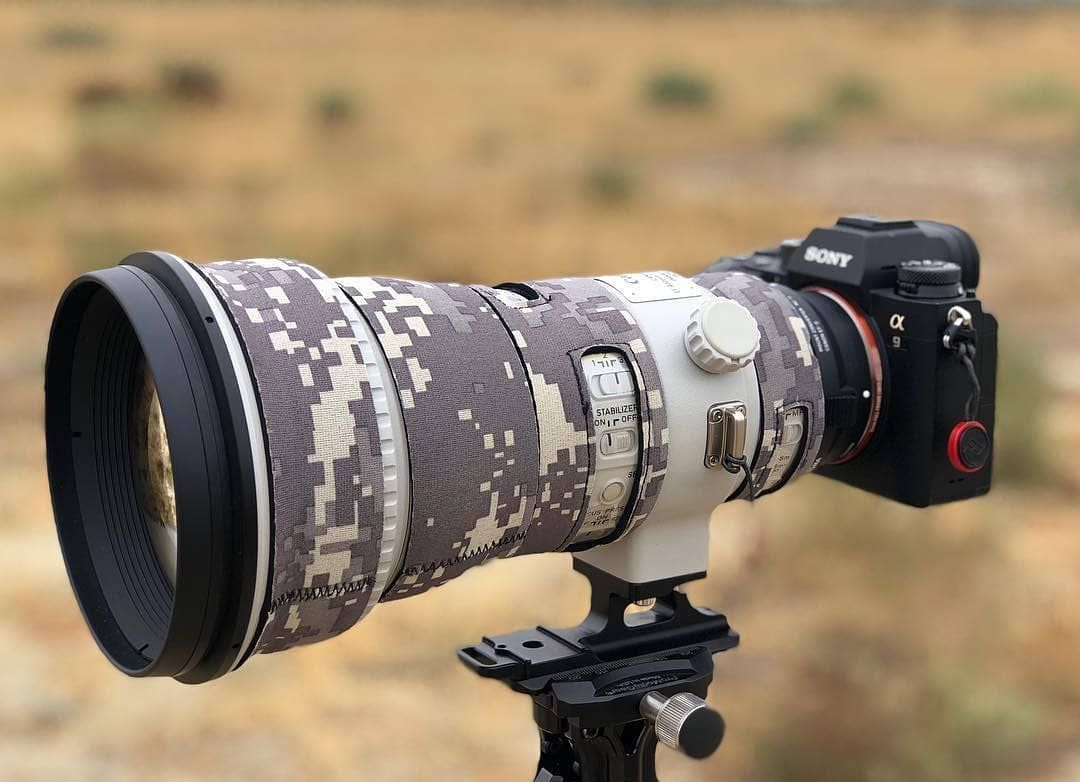 Wesome Combo For Birdwatchers Wildlife And Sport Photographers Sony A9 Canoncanada 400mm Do Ll Would You L Stylish Camera Sports Photograph Camera Lens
