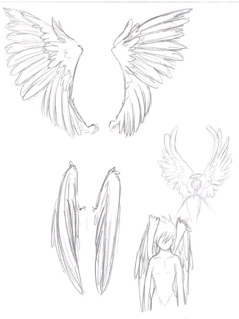 Images Of Anime Wings Buscar Con Google Wings Sketch Wings Drawing Drawing Body Poses