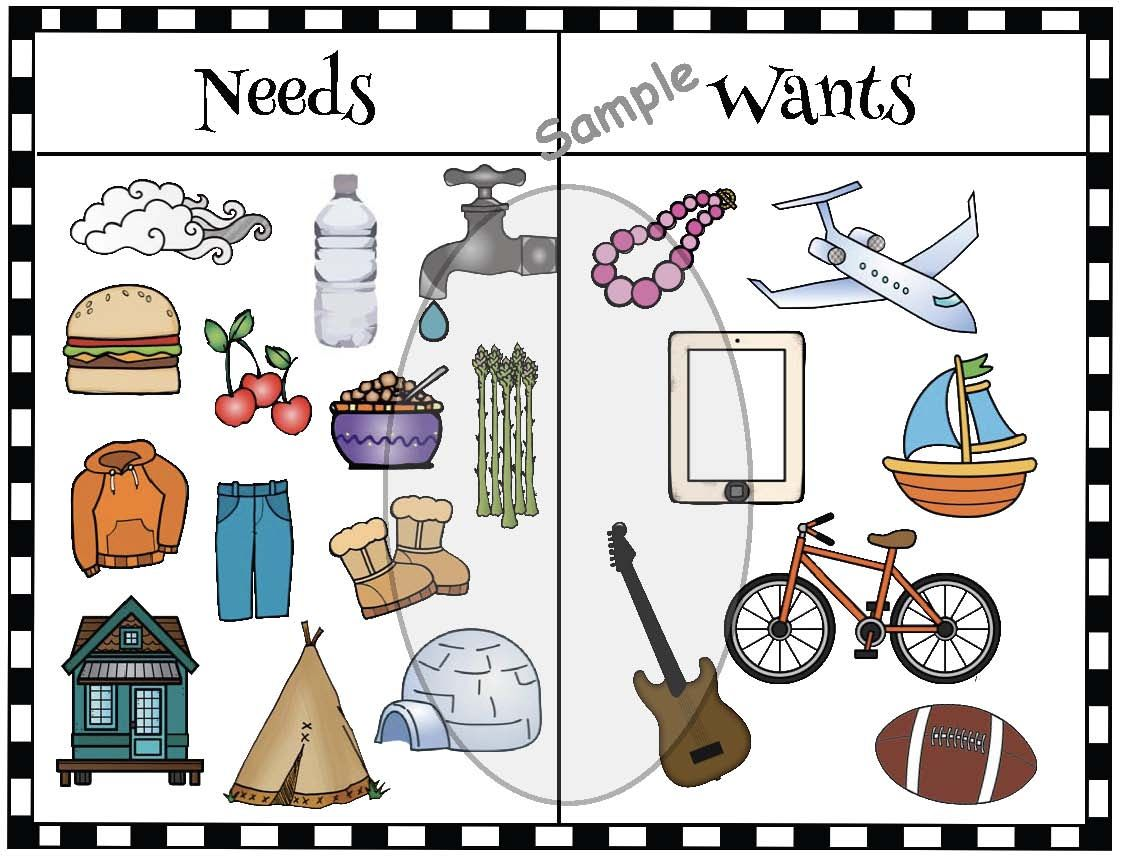 Activities For Needs Amp Wants