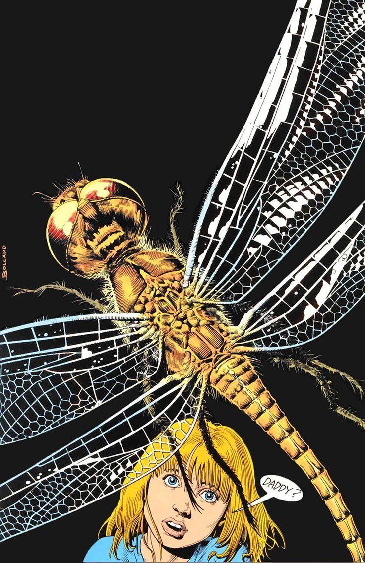 Animal Man - Jamie Delano, Brian Bolland