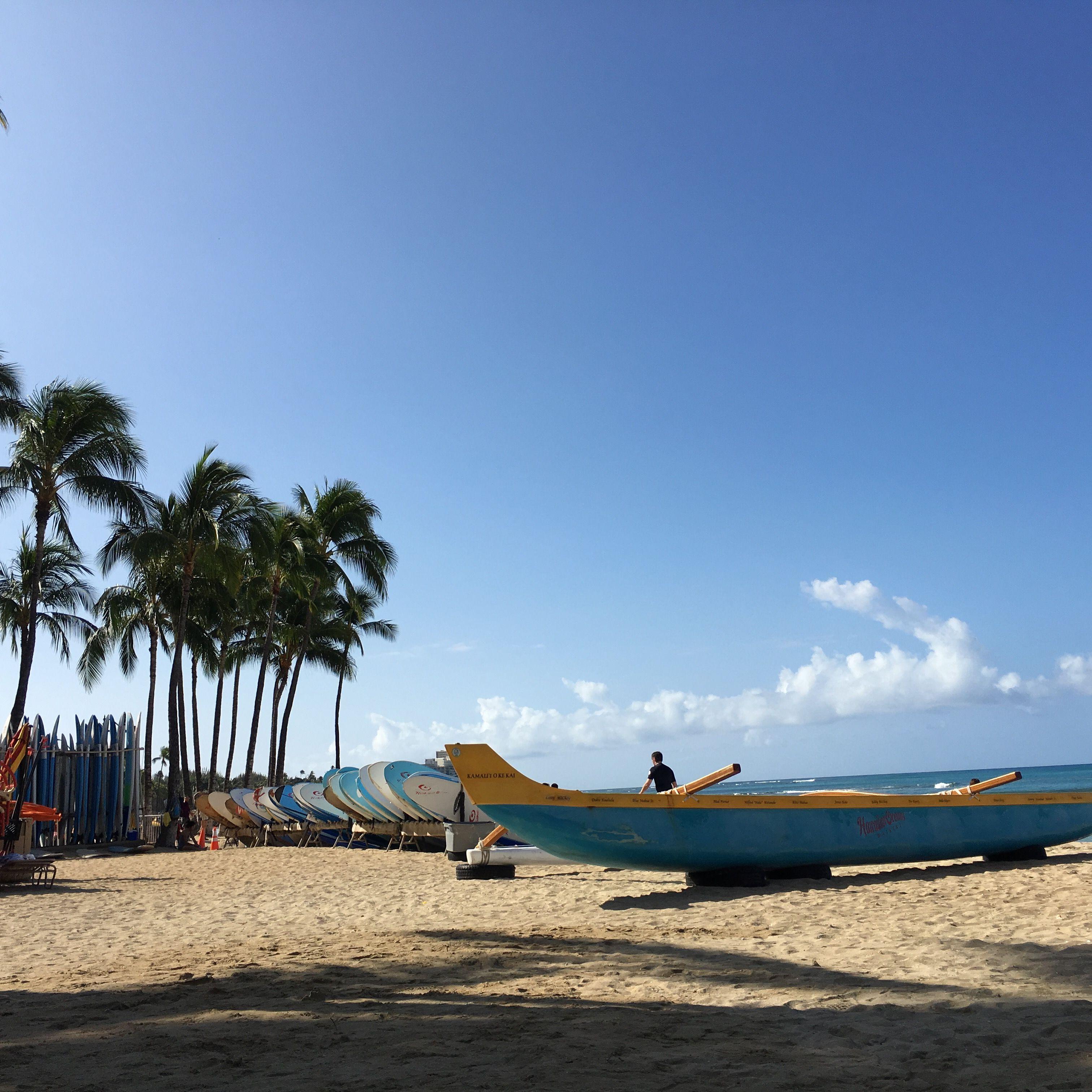 Never Sick of the Food, Weather, Beach: Oahu, Hawaii   코리일보   CoreeILBO