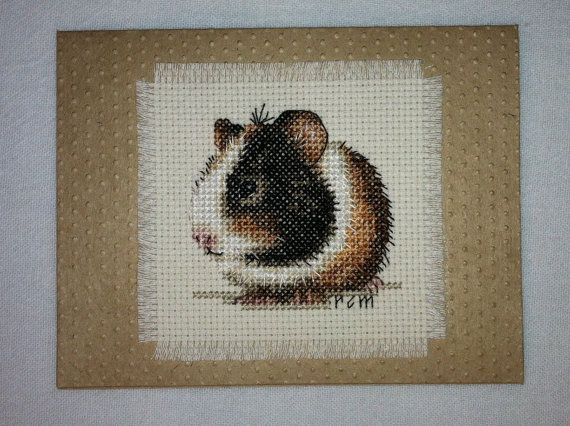 Adorable Tri Color Guinea Pig Cross Stitch Pinterest Cross