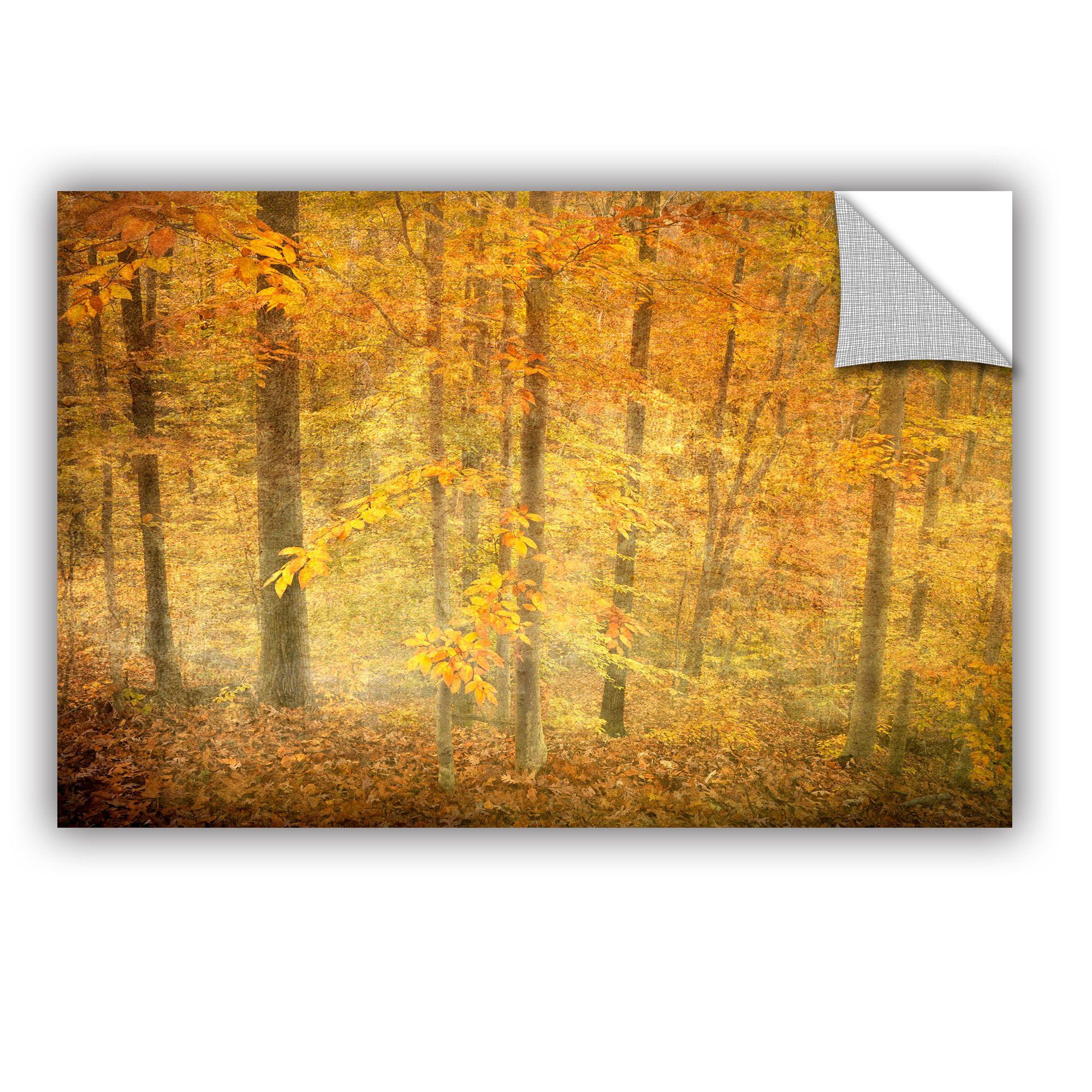 You\'ll love the Lost In Autumn by Antonio Raggio Art Appeelz ...