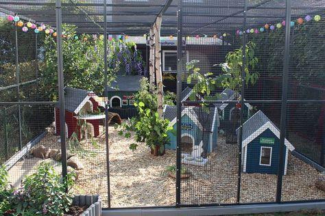 Large Garden Chicken Coop Garden Chicken Garden Chickens Backyard