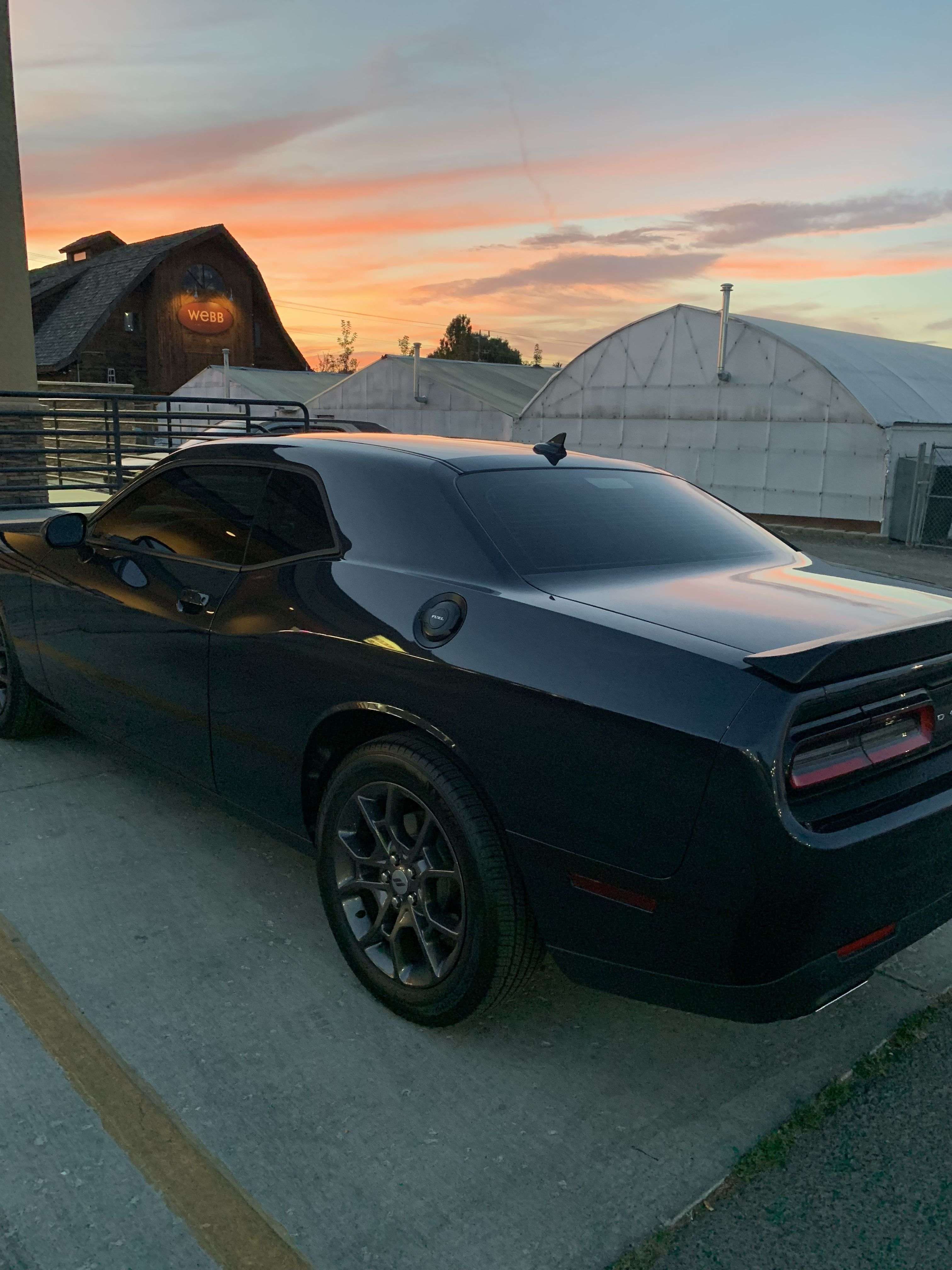 Tinted Windows Today! | Dodge Challenger | Dodge challenger