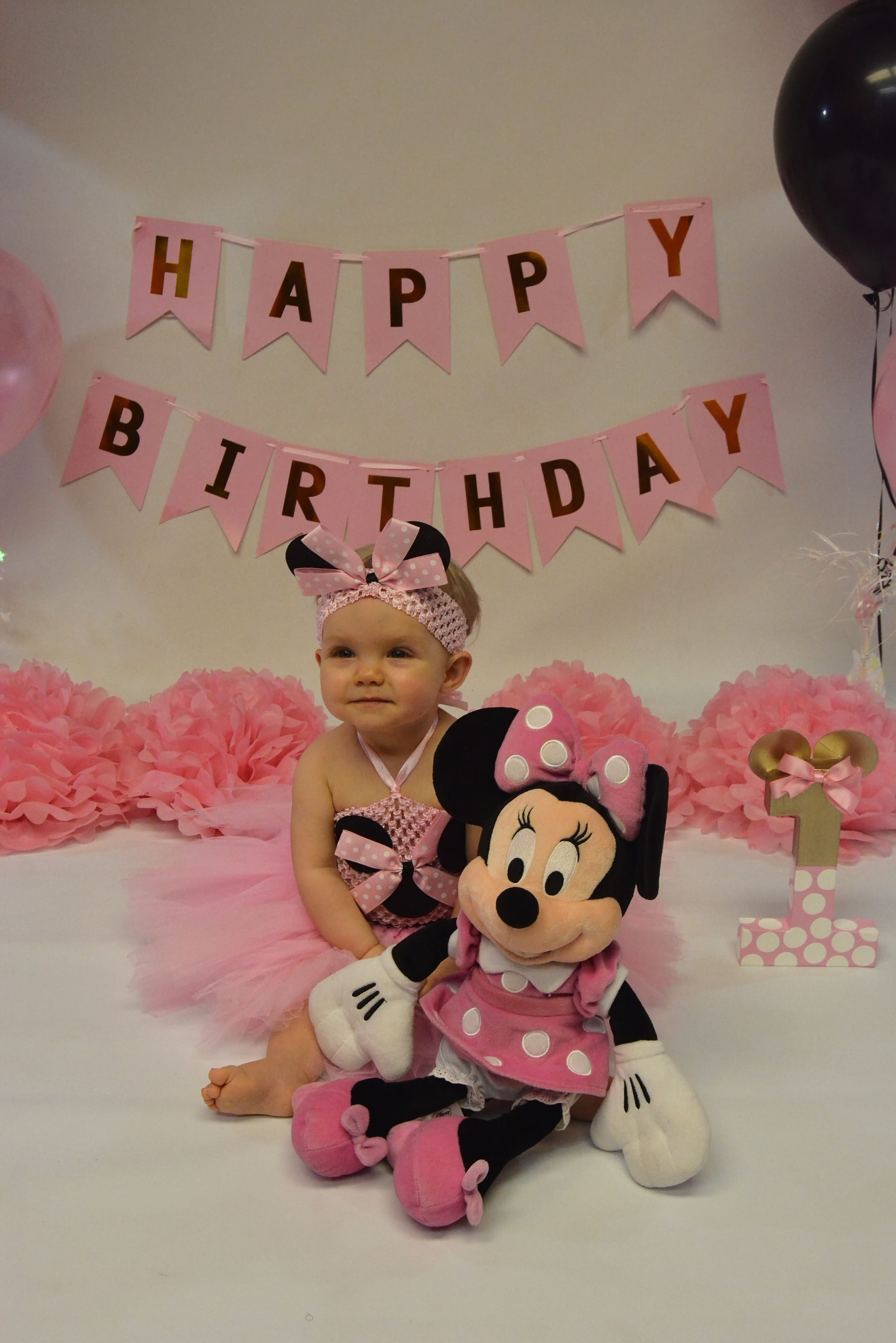 Children S Photographer Minnie Mouse 1st Birthday Minnie Mouse First Birthday Minnie Birthday Party