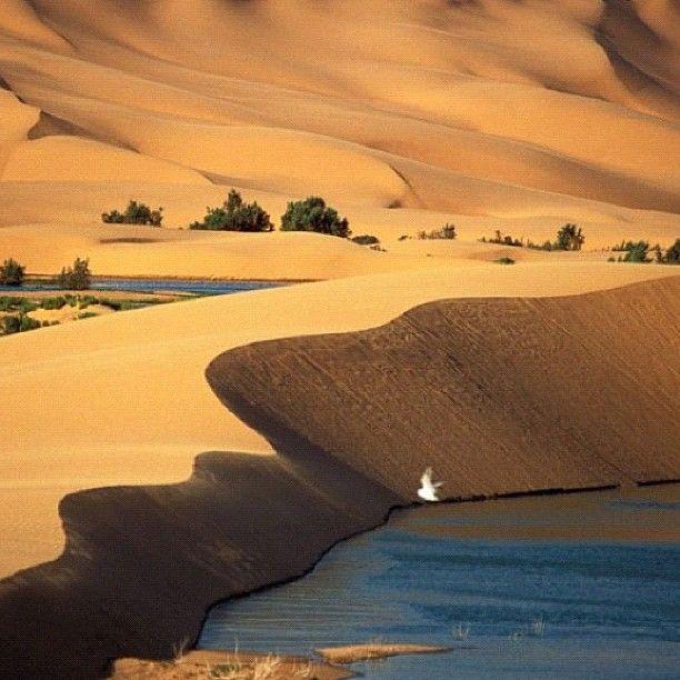 السياحة في المغرب مدن مناطق رحلات صور مناظر طبيعية Morocco Travel Morocco Photo Tour