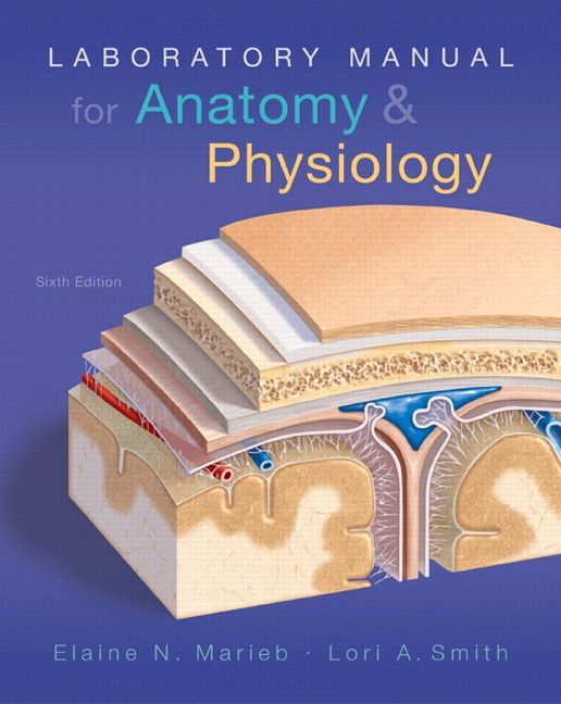 Laboratory Manual for Anatomy and Physiology 6th Edition Marieb ...