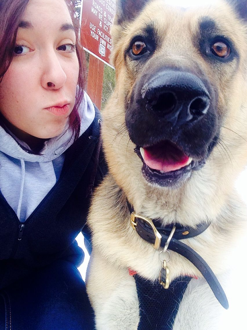 My profile picture  with #jäger #dog in the snowy #mountains❄️✨❄️