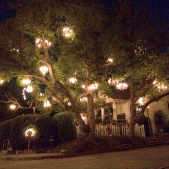 awesome Beautiful Chandelier Tree 22 Interior Decor Home with ...