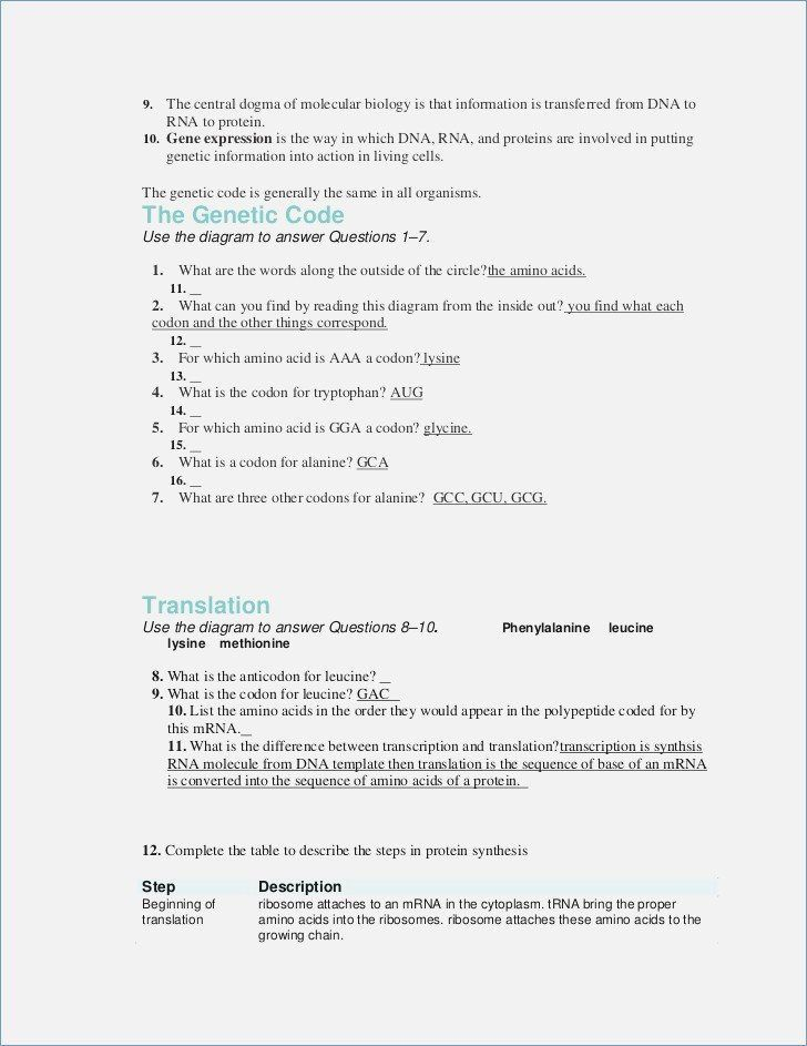 Dna the Genetic Material Worksheet Answers Lovely Dna the Genetic ...